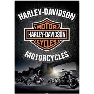Toalha de Praia Microfibra Harley Davidson 180 x 100 cm